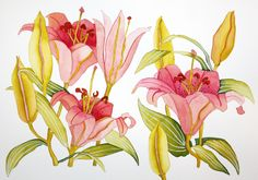 Watercolour lilies, by Fiona Peart