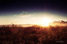 Towards the Sun | David Schermann