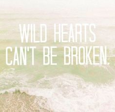 I always said wild hearts couldn't be tamed. But this makes sense too!