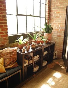 vases/ceramics mixed in with potted plants--good way to display small pretty things without it just looking like they were all shoved on a shelf Danielle's Good Look'n Live/Work Loft
