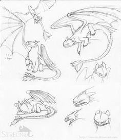My first Toothless sketches…I just came from the cinema (the second time haha ^^) (done HTTYD dragon design © to Dreamworks Toothless sketches Toothless Sketch, Toothless Tattoo, How To Draw Toothless, Httyd Dragons, Dreamworks Dragons, How To Train Dragon, How To Train Your, Animation Sketches, Drawing Sketches