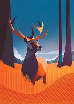 Charlie Davis on Behance Landscape Illustration, Flat Illustration, Graphic Design Illustration, Graphic Illustrations, Digital Illustration, Richmond Park, Graphic Design Inspiration, Artist At Work, Vector Art