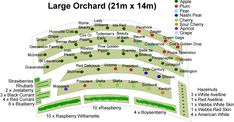 Large Orchard (21mx14m) | Grow Your Own Food
