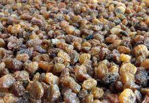 Frutas ricas en antioxidantes http://blgs.co/dfjYK6