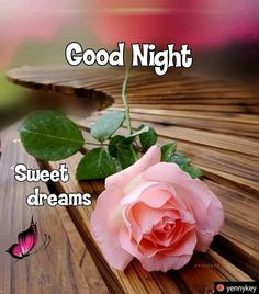 Good Night sister and all,have a peaceful sleep, God bless xxx❤❤❤✨✨✨🌙 Good Night Thoughts, Good Night Love Quotes, Beautiful Good Night Images, Good Night Prayer, Good Night I Love You, Good Night Blessings, Good Morning Good Night, Day For Night, Morning Msg