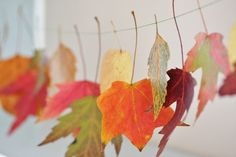 Leaf garland #coloreveryday