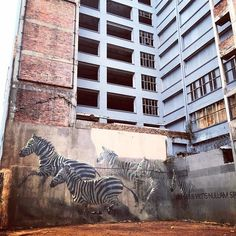 Awesome wall art in Johannesberg. Animal Print Rug, Graffiti, Africa, Wall Art, Street, Awesome, Board, Instagram Posts, Decor