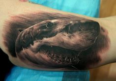 Tattoo from Spain tagged with Arm Realistic Shark Tattoo realized by Fredy Tattoo. Shark Tattoos, 3d Tattoos, Animal Tattoos, Sleeve Tattoos, Tattos, Bicep Tattoo, Piercing Tattoo, Piercings, Angel Back Tattoo