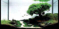 28 Modern Fish Tanks That Inspire Relaxation Planted Aquarium, Aquarium Aquascape, Aquarium Nano, Aquarium Terrarium, Aquarium Landscape, Live Aquarium Plants, Nature Aquarium, Aquarium Fish Tank, Live Plants