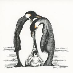 Pen and Ink drawing of penguin family - Print Ink Pen Drawings, Love Drawings, Drawing Faces, Animal Drawings, Drawing Sketches, Penguin Drawing, Penguin Tattoo, Penguin Art, Family Sketch