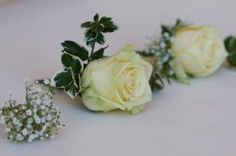 Rose, Ivy, Gyp Buttonholes