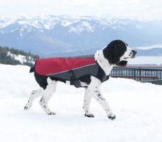 Ezydog Element Jacket - high quality dog coat