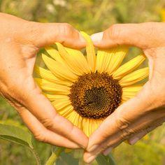 Mythos Liebe - 5 Fehler, die Sie in der Liebe vermeiden sollten , Heilpraktiker Psychotherapie München