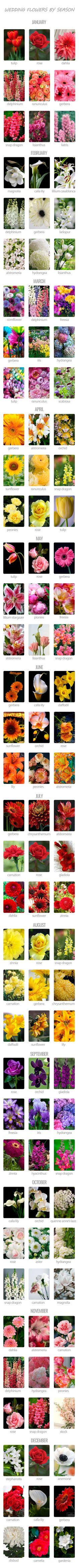 Choosing Wedding Flowers By Season ❤ Want to save money on your wedding? Choose in season flowers! See more: http://www.weddingforward.com/choosing-wedding-flowers-season/ #weddings #bouquets                                                                                                                                                                                 More