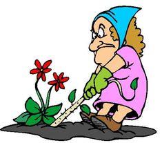 Start Your Garden Right! - Choose Marshall