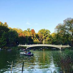 Atardecer otoñal en el parque Central.  Fall sunset at Central Park. #viajeranoturista #parquecentralnyc #otoño2016 #atardecerotoñal #travelernottourist #centralparknyc #fall2016 #fallsunsets