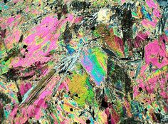 Talc in thin section; who would have thought that such a plain mineral would look so incredible Rocks And Gems, Rocks And Minerals, Animal Vegetable Mineral, Magnified Images, Union College, Crystal Growth, Art Storage, Mineralogy, Mineral Stone