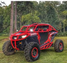 RZR MEAN AND READY FIR ANYTHING.