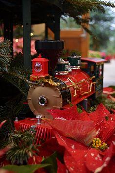 2012 Holiday Poinsettia Show & Train Garden