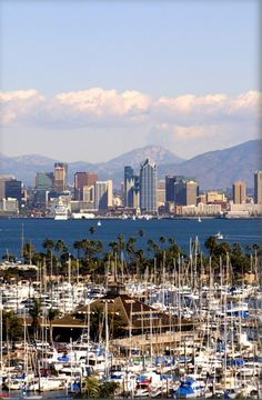 Skylines don't get much prettier than this. San Diego, CA