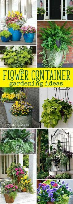 Flower Container Gardening Ideas #containergarden