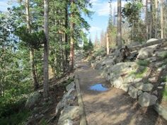 Sprague Lake...... Beautiful Trail That Is User Friendly For Feet, Scooters, Strollers and More!
