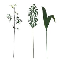 MYCKA  Artificial leaf, assorted  $3.99 #beachy #tropical