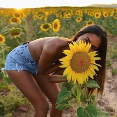"36.3 mil Me gusta, 307 comentarios - Emelie Natascha Lindmark (@emitaz) en Instagram: ""We are all golden sunflowers inside favourite picture by: @oscarminyo ♥️"""