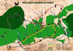 Map Khologha Forest Stutterheim