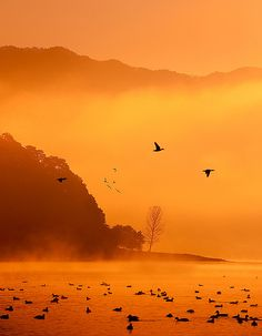 Morning flight over Lake Kawaguchi, Japan