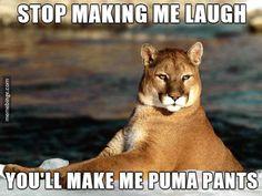 Puma puns