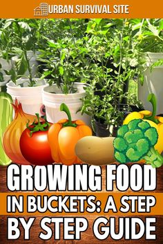 Growing your own groceries in five-gallon buckets allows you to raise enough food to feed a family of four in a tiny space. Urban Survival, Survival Food, Survival Tips, Emergency Preparedness, Survival Skills, Emergency Preparation, Container Gardening Vegetables, Vegetable Garden, Herb Garden