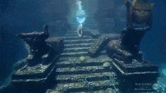Mermaid Gifs, Siren Mermaid, Mermaid Tale, Fantasy Creatures, Mythical Creatures, Sea Creatures, Professional Mermaid, Undersea World, Mermaids And Mermen