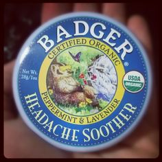 I feel like we are going to become best friends. #headaches #migraine #badger - via @danfonta