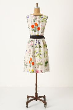 Tuileries Dress - Anthropologie.com