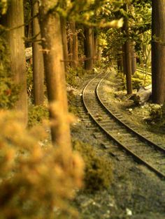 On the Highline Ho Scale Train Layout, Model Train Layouts, Ho Model Trains, Ho Trains, Escala Ho, Model Railway Track Plans, Garden Railroad, S Bahn, Train Pictures