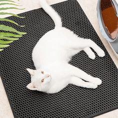 LITMAT™ Cat Litter Mat – TugNPup Cat Litter Mat, Litter Box, All Types Of Cats, Urine Stains, Things That Bounce, Your Pet, Kittens, Kids Rugs, The Incredibles