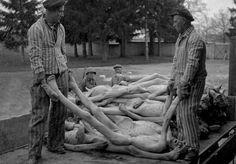 Descubren las crueles torturas que los americanos cometieron contra los nazis en Dachau