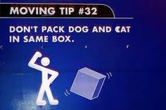 Moving tips from Budget!