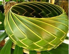 Here is a collection 'Beautiful Leaf Art' from around the world. Flax Weaving, Weaving Art, Basket Weaving, Palm Frond Art, Palm Fronds, Coconut Leaves, Flax Flowers, Leaf Bowls, Maori Art