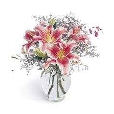Pink Lily Bouquet Lovely and fragrant Stargazer lilies are a wonderful way to…