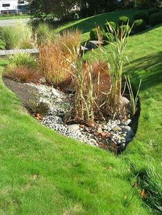 How to plant a rain garden! So many great tips! Although, we recommend contacting someone to check out your property before doing it yourself. via HGTV Garden Blog