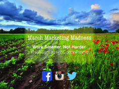 Monday's March Marketing Madness from High Cotton Promotions. Work Smarter. Not Harder. Creating a social media presence for your business can seem overwhelming...let us help! Kelsey@HighCottonPromotions.com #NoBSsm #HighCottonPromo
