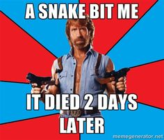 The 23 Most Ridiculous Chuck Norris Memes Ever | BlazePress