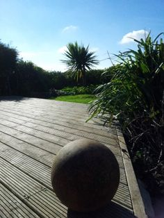 ball, deck and palm tree Google Home, Palm Trees, Deck, Outdoor, Outdoors, Decks, Outdoor Games, Outdoor Life