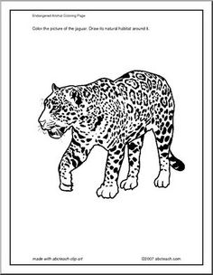 coloring pages of endangered animals - photo#35