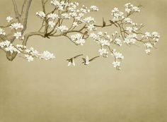 Chinoiserie Hanging Magnolia Tree Wallpaper, Handpainted Brushwork Flying Birds and Magnolia Flowers Wall Murals for Living or Dinning Room Magnolia Trees, Magnolia Flower, Tree Wallpaper, Photo Wallpaper, Magnolia Wallpaper, Scenery Background, Smooth Walls, Traditional Wallpaper, Flower Wall