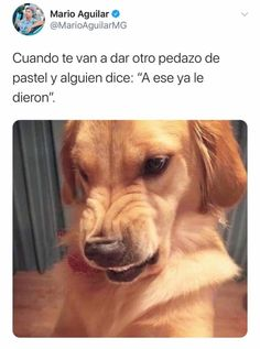 Funny Spanish Memes, Spanish Humor, Funny Internet Memes, Funny Memes, Mexican Memes, Humor Mexicano, New Memes, Spotify Playlist, Haha Funny