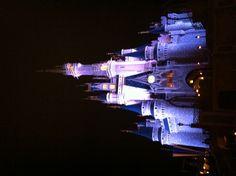 Cinderella's castle in Disney World Disney Magic Kingdom, Cinderella Castle, Art Inspo, Orlando, Vacation, Building, Spaces, Night, Orlando Florida