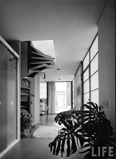 """""""The Eames House is a landmark of mid-20th century modern architecture located at 203 North Chautauqua Boulevard in the Pacific Palisades neighborhood of Los Angeles. It was constructed in 1949 by husband-and-wife design pioneers Charles and Ray Eames, to serve as their home and studio."""""""